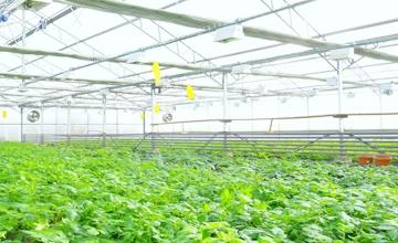 solutions_Scenes-modern-farm02